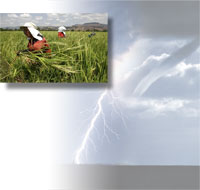 Agricultural workers in a field; a tornado and lightning stirke.